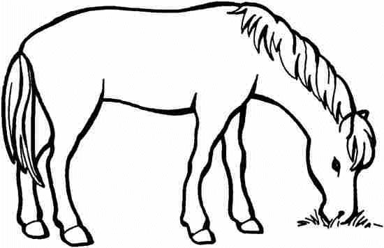 coloriages cheval 86