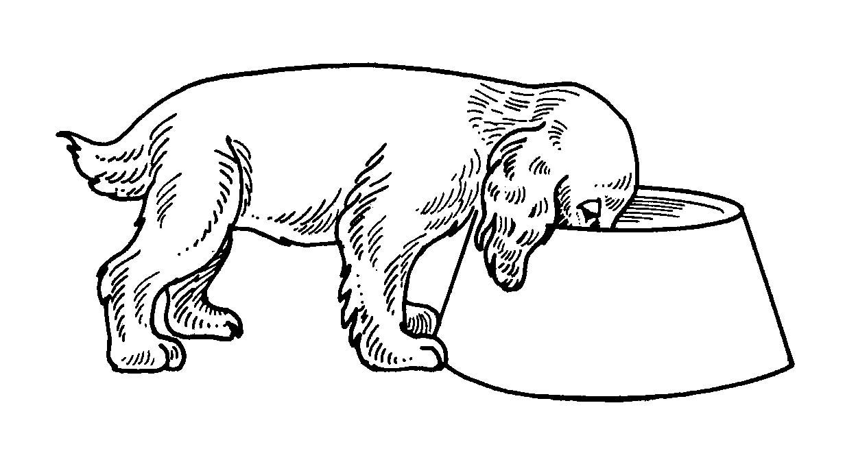 coloriages chien 19 - Coloriage Chien