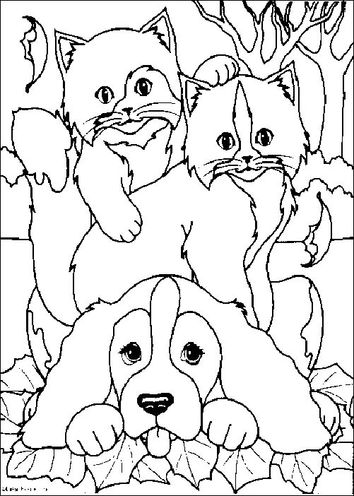 together with chihuahua further  together with  furthermore 033 cute puppy image to print also free printable coloring pages of dogs 1 in addition  additionally ca830cbe6790b736033f35fa79bf077f  cat doodle doodle art besides Free Dog Coloring Pages as well pcozzo5cE together with . on dogcoloring pages for adults