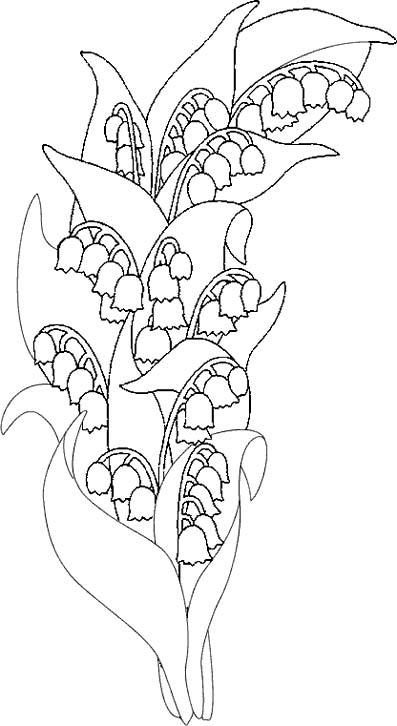 Coloriage fete du muguet 4 - Coloriage muguet ...